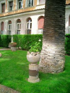Diese Palme im Garten der Villa Malta (Rom) wurde von Ludwig I von Bayern gepflanzt.
