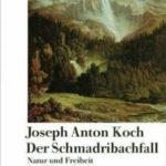Der Schmadribachfall - Buch von Hilmar Frank